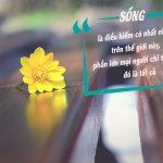 Video: 8 câu nói nghe 1 lần khôn mãi đến già | Góc Suy Ngẫm