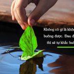 Lời Phật dạy về những bài học sâu sắc trong cuộc sống