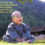 Ghi nhớ 20 lời Phật dạy để có cuộc sống an nhiên, hạnh phúc
