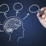11 sự thật thú vị về bộ não có thể bạn chưa biết